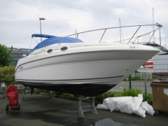 SEA RAY 260 SUNDANCER Urheiluvene