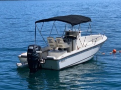 Boston Whaler Power Boats search and buy a used boat | boat24 com/en