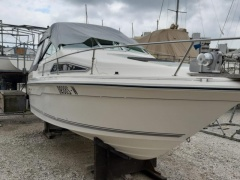 Sea Ray Power Boats search and buy a used boat | boat24 com/en