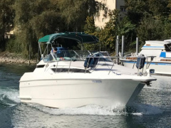 Wellcraft 2700 Martinique Sportboot
