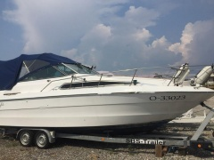 Sea Ray 250 Sundancer Kajütboot