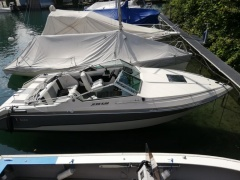 Wellcraft 222 Elite XL Yacht a Motore