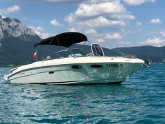 Sea Ray Sun Sport 240 Soundsystem! Sportboot