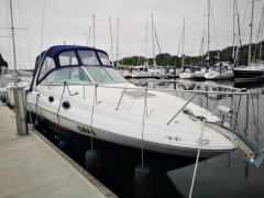 Sea Ray 260 Sundancer Kajütboot