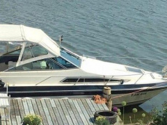 Sea Ray 230 WE Sportboot