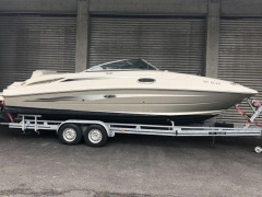 Sea Ray 260 BR Yacht a Motore