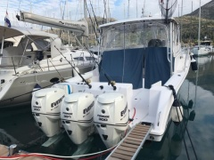 Proline 35 Express Fischerboot