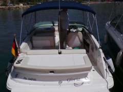 Sea Ray 240Sundeck Runabout