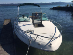 Sea Ray 215 EC Semicabinato