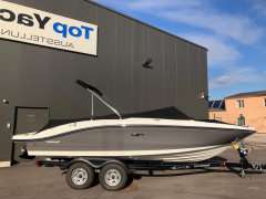 Sea Ray SPX 210 Sportboot