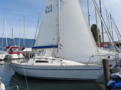 Trapper 300 Sailing Yacht
