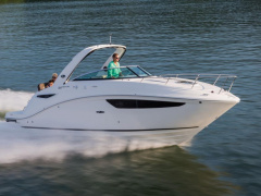 Sea Ray DA 260 Kajütboot