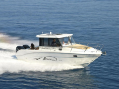 Saver 300 Deluxe Pontoon Boat