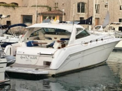 Sea Ray 500 Motorjacht