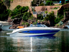 Sea Ray SPX 210 Bowrider-vene
