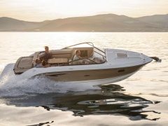 Sea Ray SUN SPORT 250 Speedboot