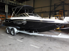 Viper 223 Toxxic mit LP am Bodensee Sport Boat