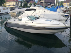 Wellcraft 222 Elite XL Sportboot