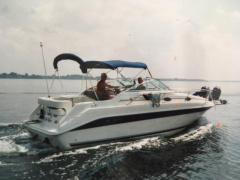 Sea Ray 250 DA Sundancer Kajütboot