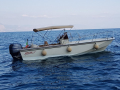 Boston Whaler outrage 20 Barca a console centrale