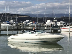 Sea Ray 200 Ov Ltd Imbarcazione Sportiva