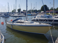 Rockport Marine Rock 20 Klassisk