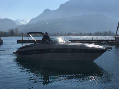Crownline 275CCR Sportboot