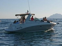 Rinker 260 Express Cruiser Speedboot