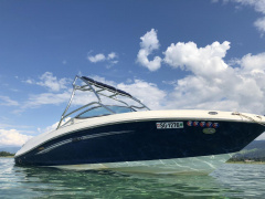 Sea Ray Select 230 Sportboot