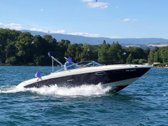 Sea Ray 240 OVE (Overnighter) Imbarcazione Sportiva