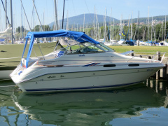 Sea Ray 230 DA Ltd Semicabinato