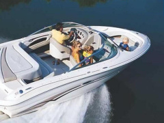 Sea Ray 200 Select Sportboot