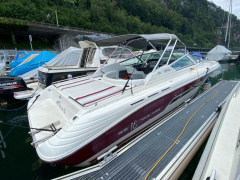 Sea Ray 310 SS Sportboot