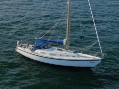Contest 33 Sailing Yacht