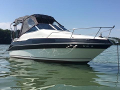 Sea Ray 230 D Navire à passagers