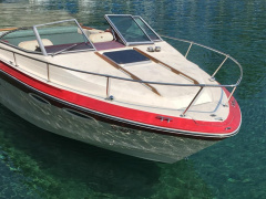 Sea Ray Srv 210 cc Sportboot