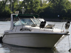 Sea Ray 270 da Kajütboot