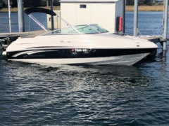 Chaparral 215 SSi Runabout