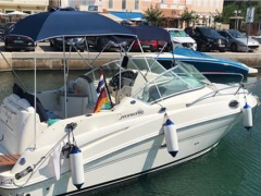 Sea Ray 240 DA Sport Boat