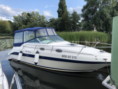 Sea Ray '25  250 Sundancer -ideales Einsteigerbo Speedboot