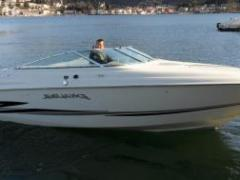 Wellcraft Excalibur 23 / Occasione Sport Boat