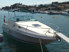 Sea Ray Sundancer 24 ft Daycruiser