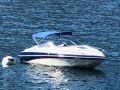 Crownline 225 CCR Sportboot