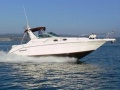 Sea Ray 300 Sundancer Yacht a Motore
