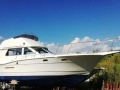 Hatteras 36 Conv Yacht a Motore