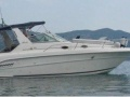 Sea Ray 300 Da Sportboot