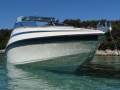 Crownline Boats 248 CCR Sportboot