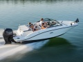 Sea Ray 190 spxe OB Bowrider