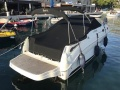 Sea Ray 255 Sundancer Sportboot