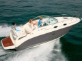 Sea Ray 255 DAE Sundancer Daycruiser